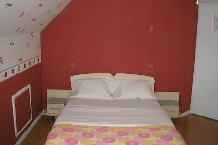 Trés grande chambre privée avec salle de bain - Chanteloup-les-Vignes