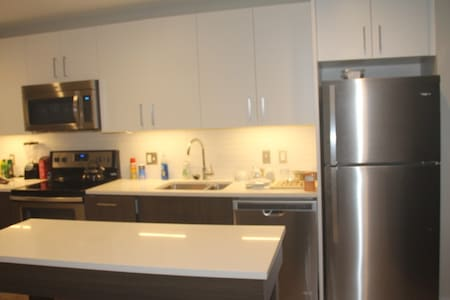 Wonderful 1BR apartment only  3 blocks from MIT - Cambridge - Lejlighed