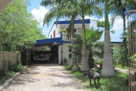 Cozy House in the Mayan Jungle - Progreso - Bed & Breakfast