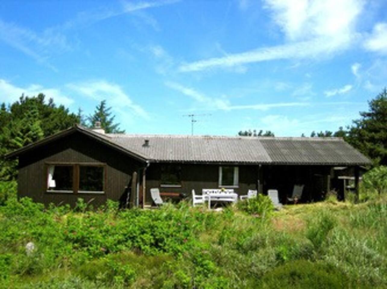 Slettestrand: Near Svinkløv: