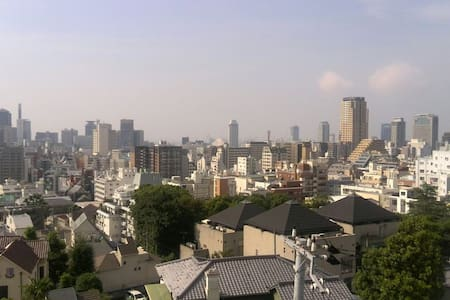 Amazing view from historic Kitano