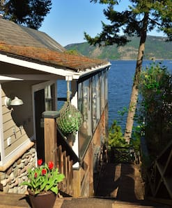 Baywatch Oceanfront Guesthouse - Chalet