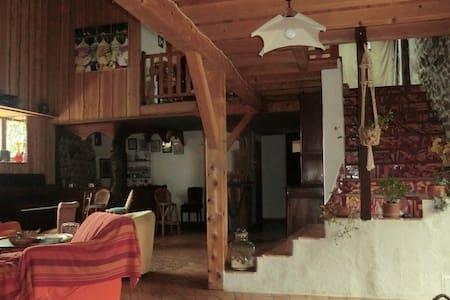 ancienne ferme rénovée - Cremeaux - House