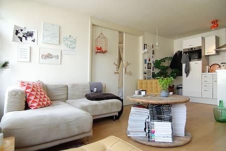 Cozy apartment, located in the Pijp