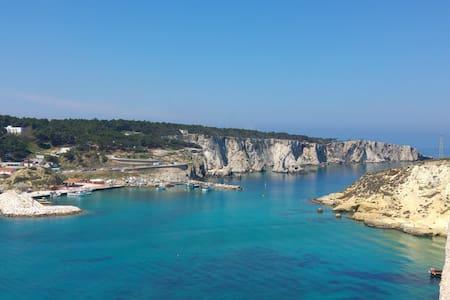 Puglia Tremiti Islands Octopus Studio | Sea & Art - Apartment