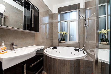 New luxury Jacuzzi studio Passage  - Wohnung