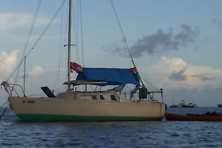 Cozy 22 Foot Eco Sailboat w/Kayaks - Boat