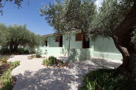 Olive Farm breakfast in Catalonia. - Tortosa