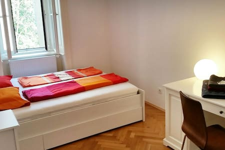 bright room in the city centre - Vienne - Appartement