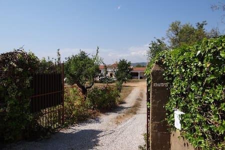 Casa Tia Bentinha, heritage home on 3 hectare farm - Casa