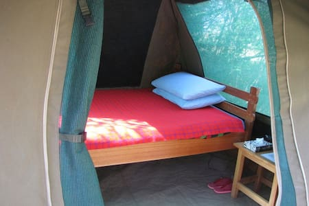 Cosy Single Tent on Full Board - Maasai Mara National Reserve - Tent