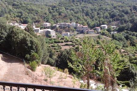 MAISON DE VILLAGE CORSE DU SUD - Frasseto