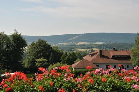 Tolle Ferienwohnung in Fichtelberg - Flat