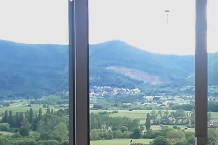 nid de rêve - Obernai - Apartment