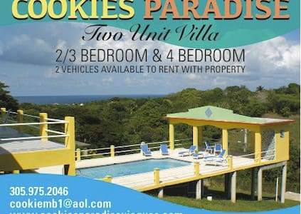 Cookies Paradise main House - Talo