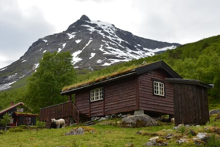 Charming mountain cabin in Vengedalen - Isfjorden - Stuga