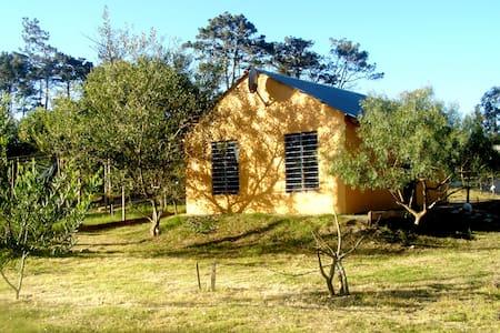 Cabaña  Ka'aguy - Blockhütte