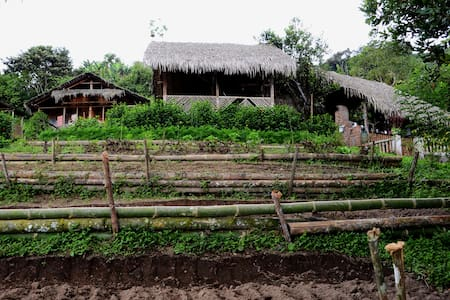 Organic Coffee and Cacao Plantation - Zomerhuis/Cottage