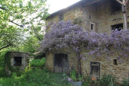 Vieille Ferme Ecologique:Cluny à 15mins - Montagny-sur-Grosne - Earth House