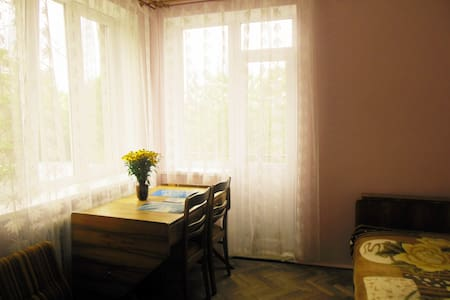 Guest room in Lviv, close to the city center - Hus