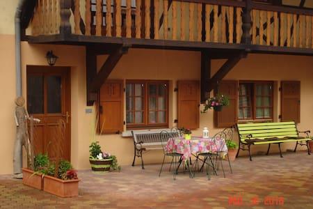 Gîte rural neuf au centre de l'Alsace - Dom