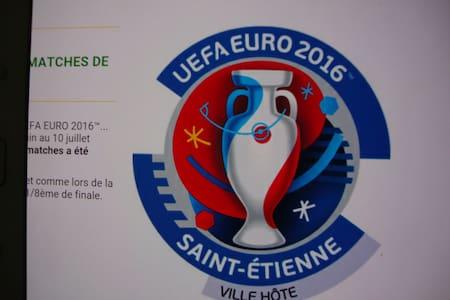 euro 2016 st etienne geoffroy guichard 3 chbres - Dom