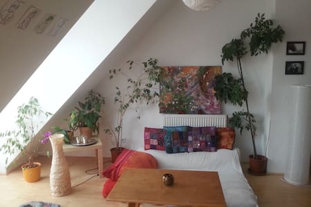 Cozy rooftop apartment with great public access - Appartement