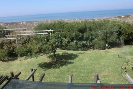 Casa das Dunas - Murtinheira beach - House