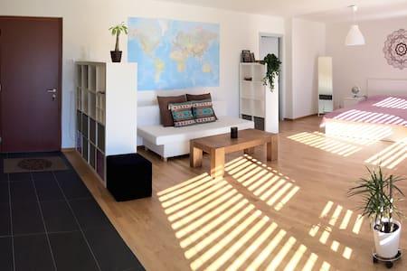 """Grand Soleil"" studio plein centre - Sion - Apartment"