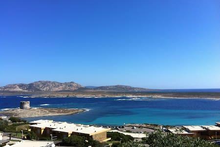 villetta sul mare davanti l'Asinara - Stintino