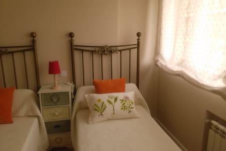 habitación con dos camas de 90 cm. - Valladolid - Bed & Breakfast