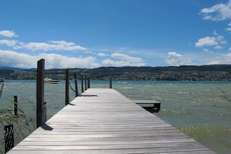 Beautiful flat on lake Zurich - Meilen