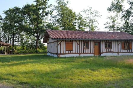 Superbe maison moderne landaise - Hus