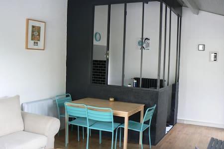 Appartemt avec terrasse vue/Loire - Wohnung