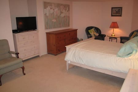 Spacious suite with kitchen and separate entrance - North Vancouver - Appartement