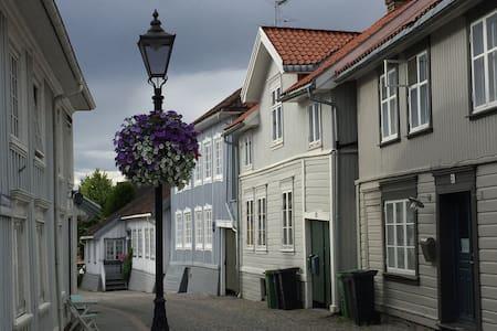 Naboen til Ibsen / Ibsen's neighboor - Skien