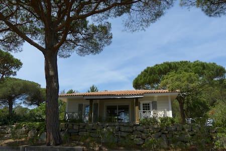 Maison en bois avec jardin de 400m² - Gassin