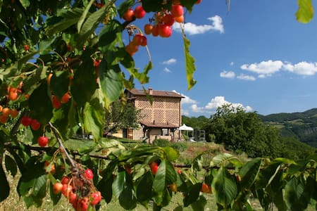 B&B Al Merlo Angelico - Bed & Breakfast