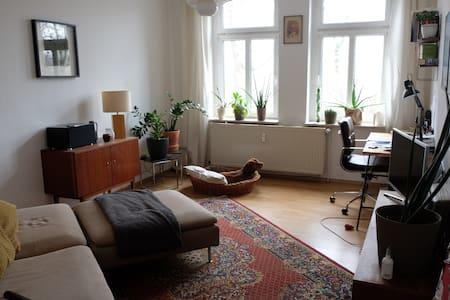 Gemütliche Wohnung im erfurter Zentrum - Erfurt - Wohnung