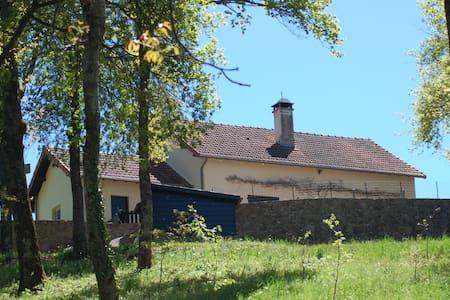 Luxe vakantievilla - Ruime tuin met hectare bos - Willa