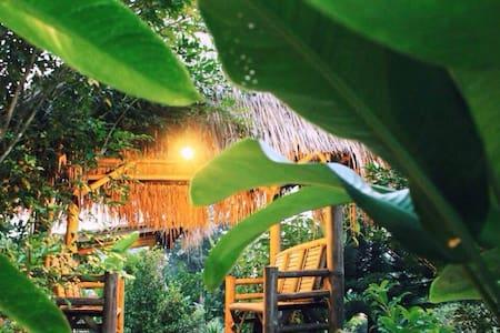 Final Land Resort Chiangdao.