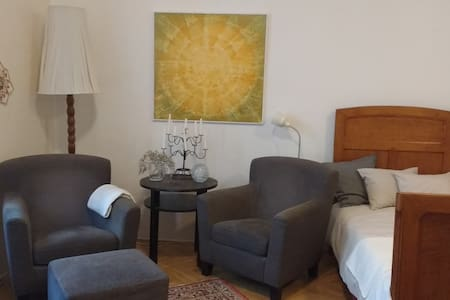 "Spacious Studio Apartment ""At the Three Princes"" - Brno - Apartment"