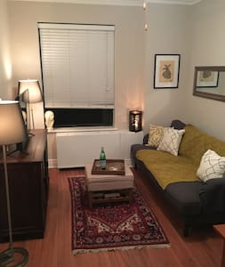 Cute Buena Park Apt Close to Lake & Wrigley Field - Chicago - Apartment