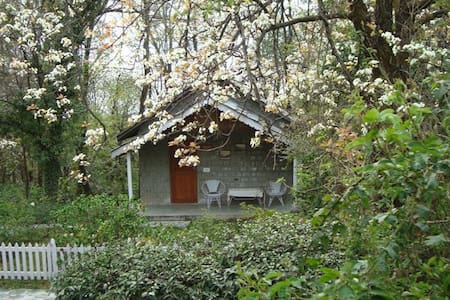 Rose Cottage at Tea Gardens in Palampur - Huoneisto