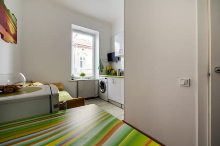 Light and shiny studio near city center - Lviv - Appartement
