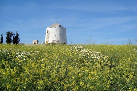 Paros Traditional Windmill - Domek parterowy