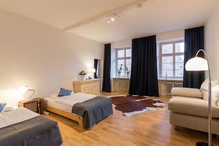 Schöne 2 Zimmer mitten in Mainz - Appartamento
