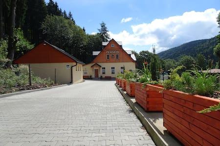 Dům na horách - Krušné hory - Karlovy Vary - Merklín - Haus