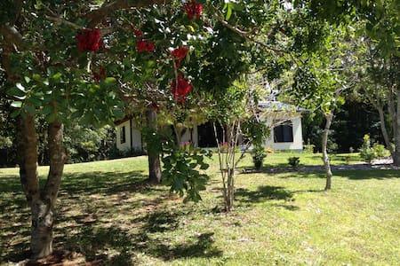 Long Cottage -  Byron Bay / Bangalow farm cottage - Bangalow - Gæstehus