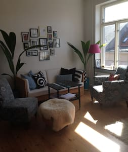 Spacious and bright apartment in the heart of Randers within walking distance of shops and the beautiful Gudenåen. The apartment has a double bed, there is room for airmattress